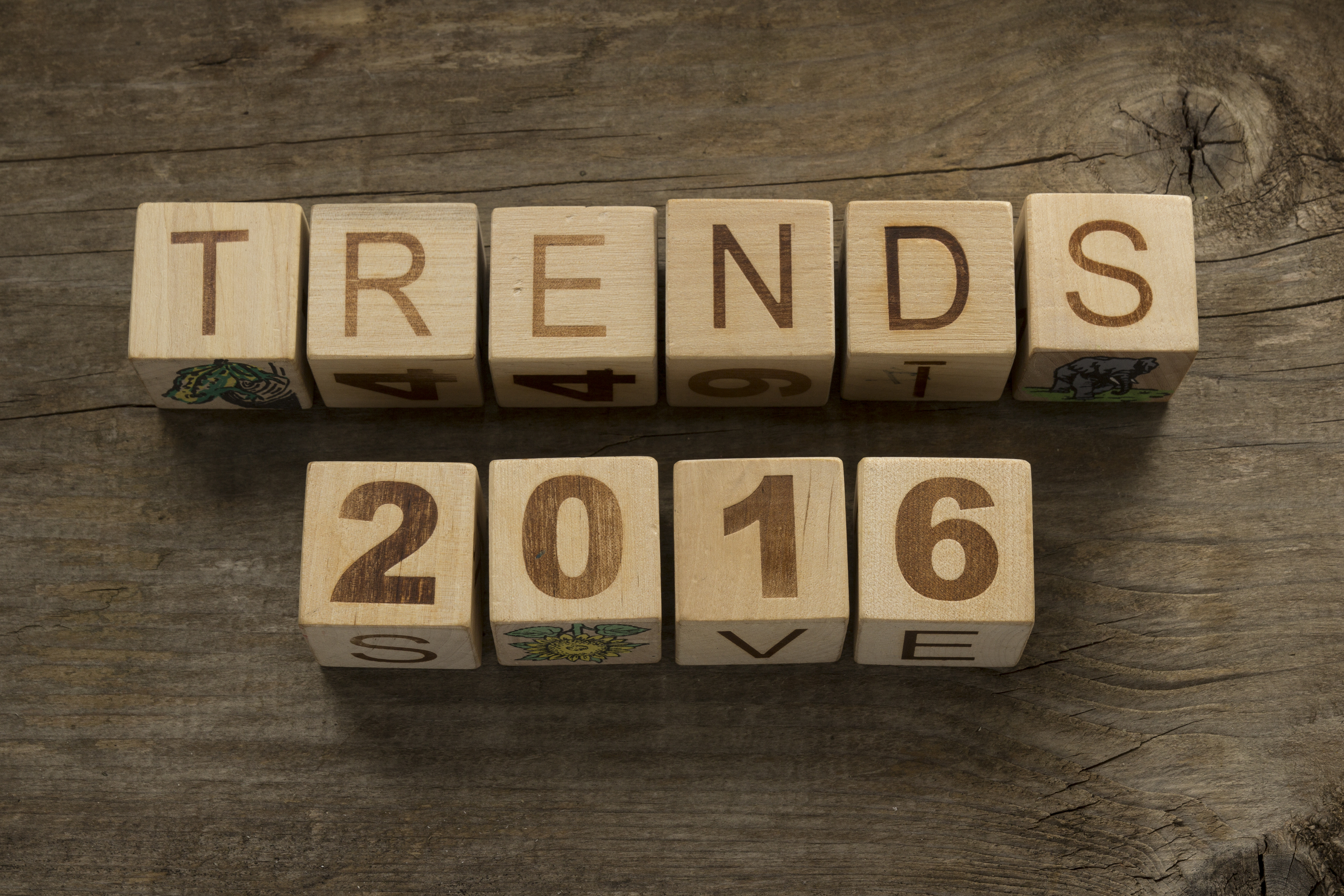 5 Business Technology Predictions for 2016