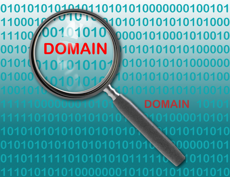 RegistryLock-is-For-the-Protection-of-.SG-Domain-Names
